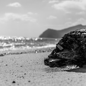 by Claudia Oliveira - Black & White Landscapes