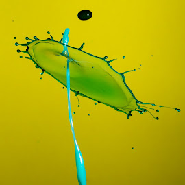 by Eddie Jeffries - Abstract Water Drops & Splashes ( waterdrops, splash water photography )