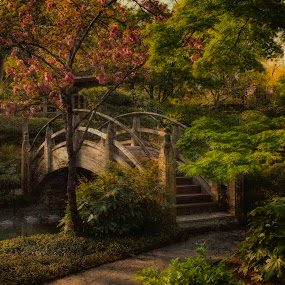 a stroll through my dream by Ruby Del Angel - Landscapes Travel ( water, nature, blooms, outdoors, fine art, ducks, trees, bridge, landscape, flowers, spring )
