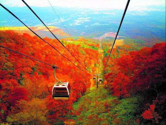 「那須高原(那須岳周辺)の紅葉」の画像検索結果