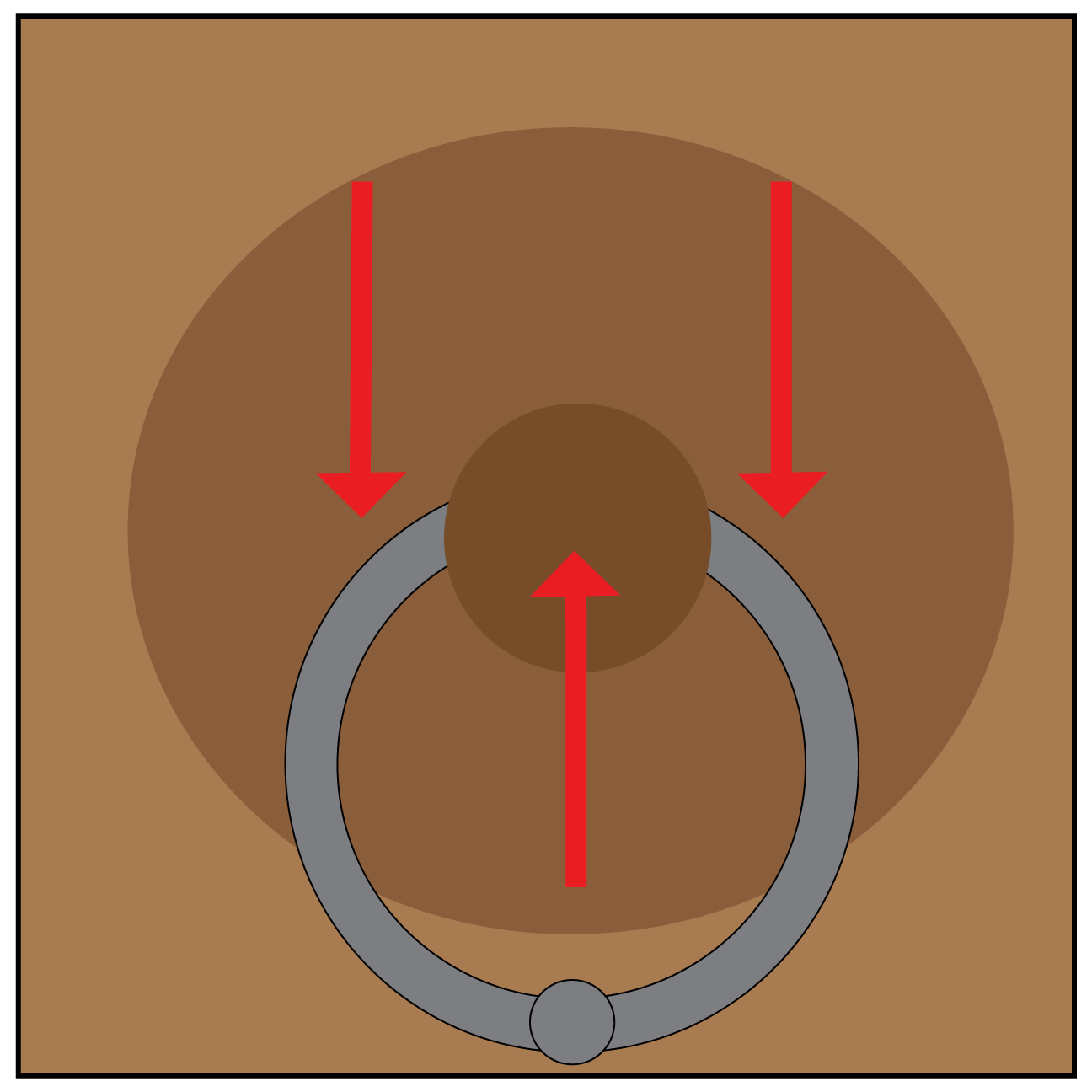 nipple-with-ring2.png