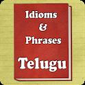 Idioms Telugu icon