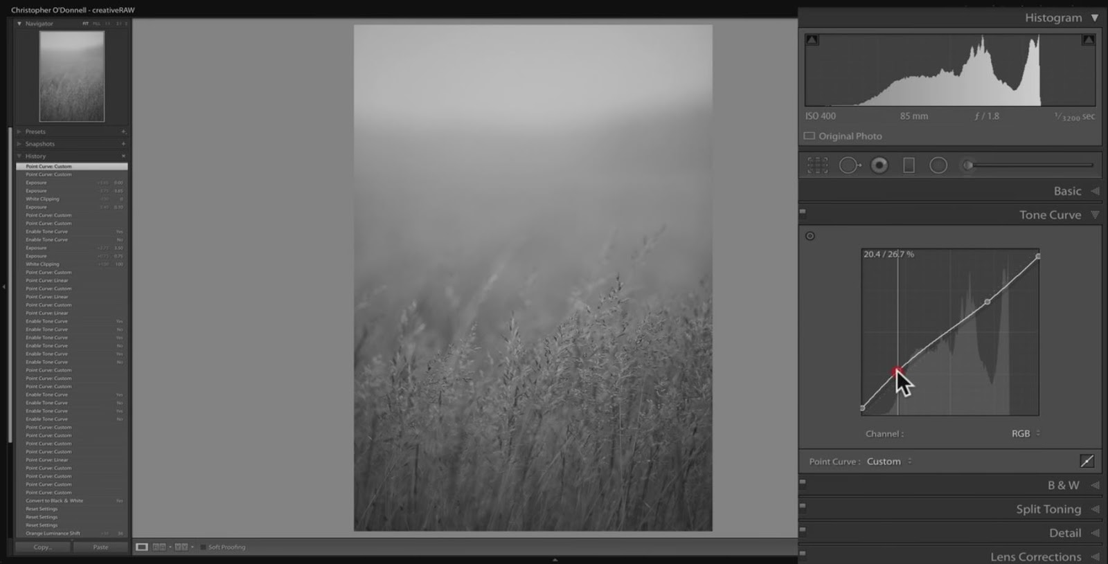 lightroom tone curve tools