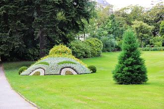 Photo: {1. Mimétisme ou imitation : l'avis des plantes} Les génies du jardin, Madame