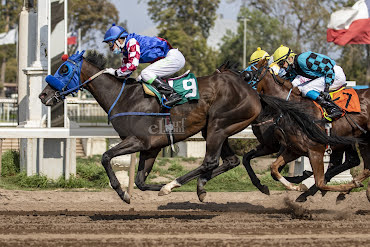 Stay Empire (Stay Thirsty) conquista Handicap (1300m-Arena-CHS).