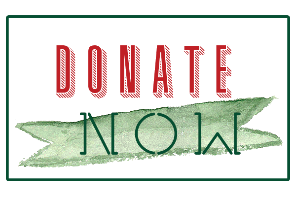 Image with the text Donate Now that directs people to the Christmas Mall donation page