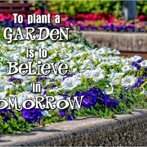 rosetta mclain garden typog.jpg