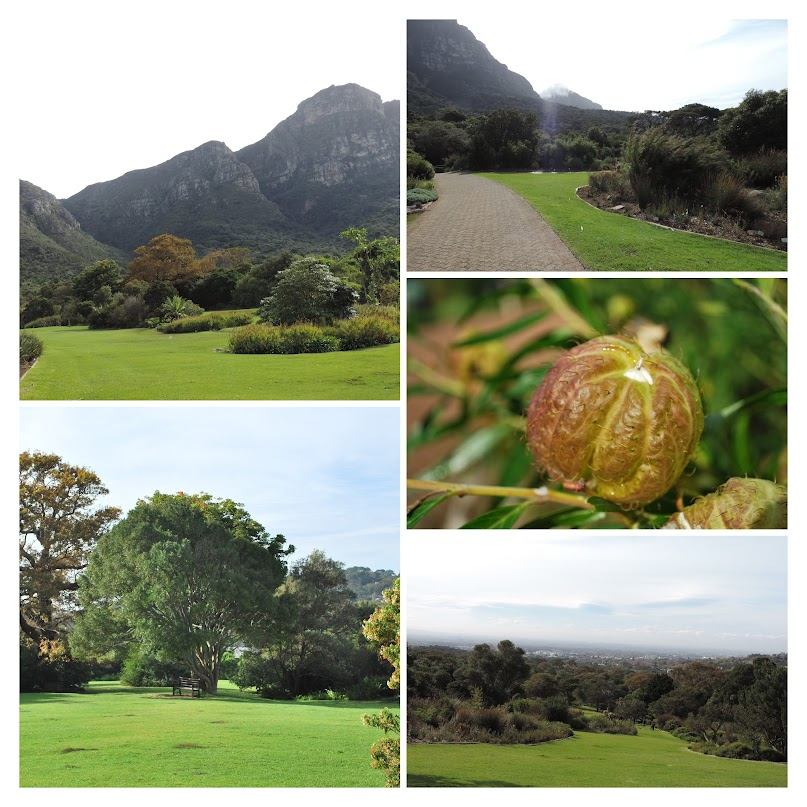 Kirstenbosch National Botanic Garden, Cape Town, South Africa