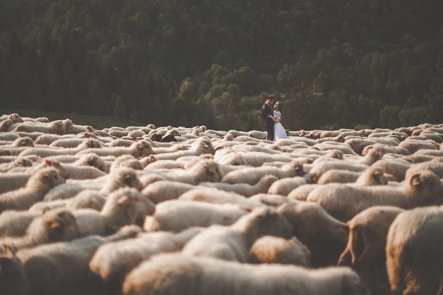 Wedding photographer Tim Demski (timdemski). Photo of 06.06.2018