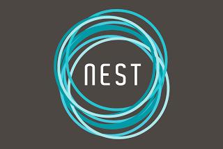 www.nestsanantonio.com