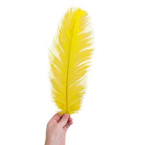 Plym, stor 40-45cm gul
