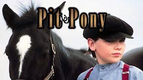 Pit Pony thumbnail