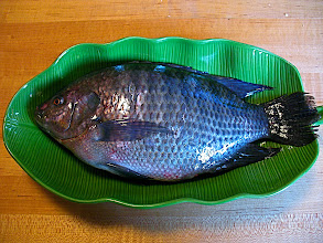 Photo: second fresh tilapia