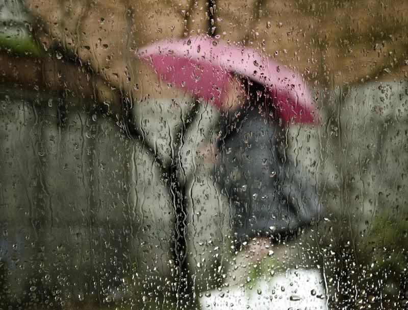 Spiando dal finestrino di Rossella13
