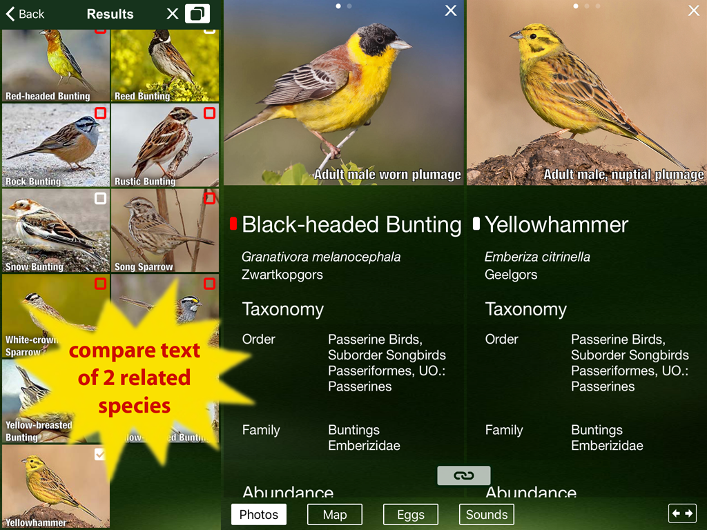 all birds netherlands guide android apps on google play