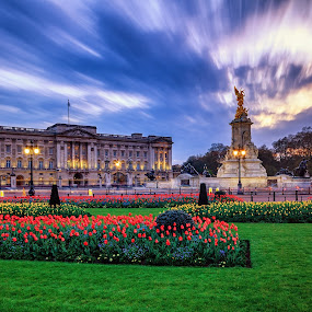 Evening at Buckingham Palace by Florin Ihora - Buildings & Architecture Public & Historical ( london, long exposure, tulips, evening, buckingham palace )