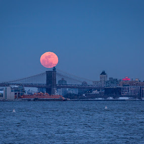 Eclipsed Snow Moon over Brooklyn by Robert Gallucci - Buildings & Architecture Bridges & Suspended Structures ( brooklyn bridge, snow moon, full moon, nyc, full moons, hunters moon, brooklyn, nightscape )