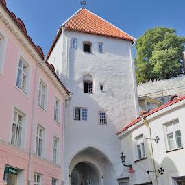 Tallin by Tomasz Budziak - City,  Street & Park  Street Scenes ( estonia, street scene, city )