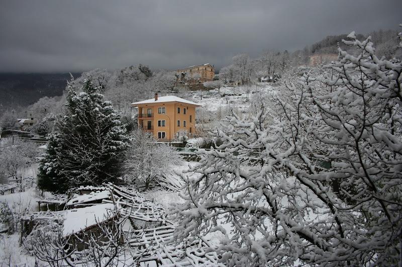 Paesaggio invernale di victor76