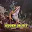 Hidden Object – June Gloom icon