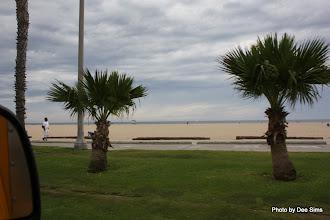 Photo: (Year 3) Day 30 - The Beach Leading to Venice Beach #3