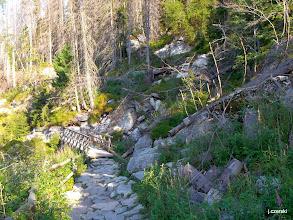 Photo: Szlak turystyczny przekracza potok mostkiem tuż przy Wodospadzie Olbrzymim.