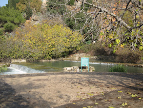 Photo: Banias springs (one source of the Jordan River)