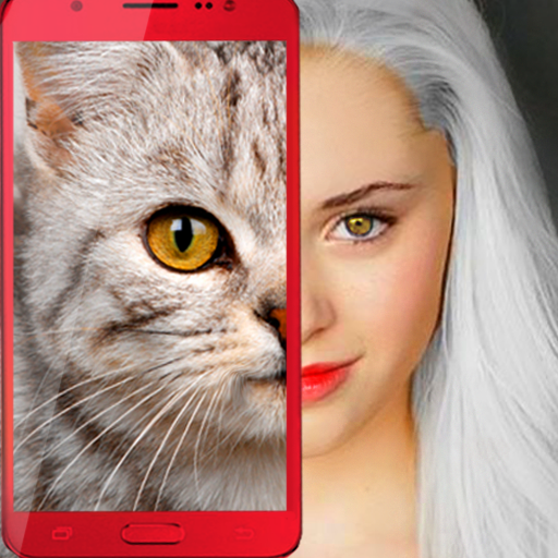 Cat Face 😻 (game)
