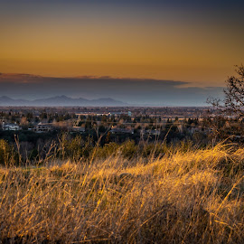 Chico and the Sutter Buttes by Michael Mercer - City,  Street & Park  Vistas