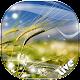 風 背景透過 - 動態壁紙 - 動態背景 (app)