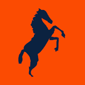Predominantly Orange: Broncos