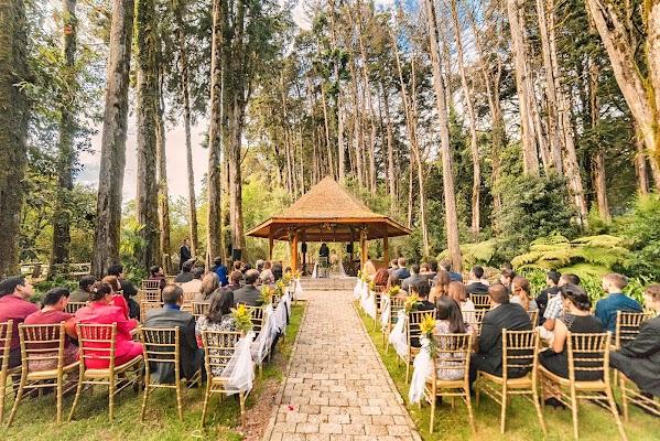 Fotógrafo de bodas Jarib Gonzalez (jaribfoto). Foto del 10.05.2016