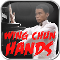 Wing Chun Hands icon