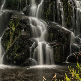 Owharoa Falls by Richard Kam - Nature Up Close Water ( waterfalls, pool, long exposure, stepping falls, natural )