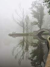Photo: Trees, bridge, and bench reflected in a misty pond at Eastwood Park in Dayton, Ohio.