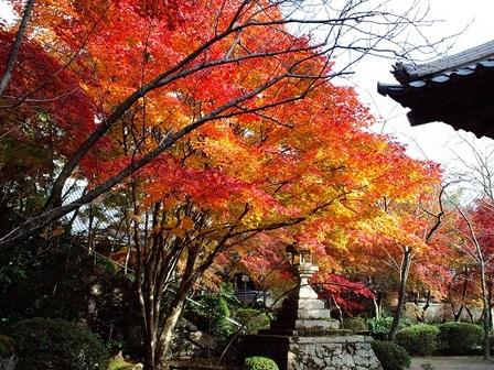 http://www.shoujiji.jp/wp-content/uploads/2012/03/CA3F0101-001.JPG
