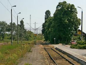 Photo: Tory i perony (widok w stronę Unisławia Pomorskiego) {Bydgoszcz Fordon; 2013-06-08}