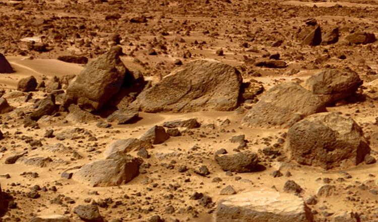 Rất khó để sinh vật có thể sống sót trên bề mặt cằn cỗi của sao Hỏa.