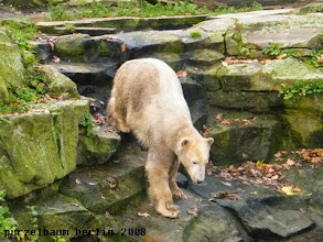 Photo: Nun aber runter zum Wassergraben ;-)
