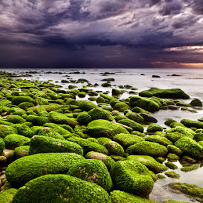 The silence after the storm by Jorge Maia - Landscapes Beaches