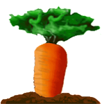 15 Carrot Gold Icon
