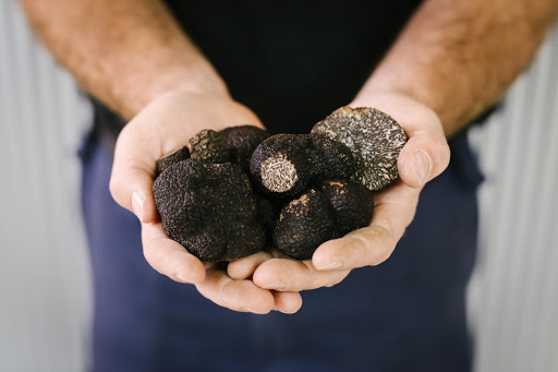 The truffle festival has begun … and a celebration of wine's not far behind