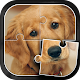 Cute Dogs Jigsaw Puzzle (game)