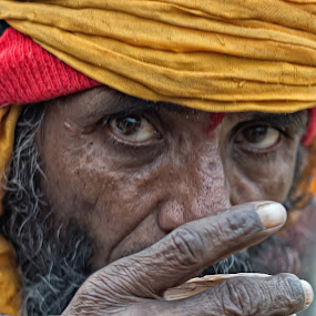 Tea Time by Soumyadip Maity - People Portraits of Men ( monk, color, clay pot, india, tea, kumbh,  )