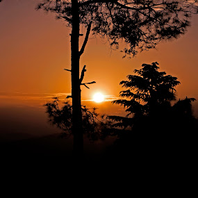Sunrise in hills by Debopam Banerjee - Landscapes Sunsets & Sunrises ( calm, nobody, mountain, silhouette, yellow, vibrant, beauty, travel, landscape, glow, sun, sky, tree, nature, serenity, asia, ecology, india, gold, light, clouds, orange, kausani, peaceful, majestic, beautiful, scenic, morning, sunlight, red, mount, season, color, blue, outdoors, peace, white clouds, uttarakhand, sunrise, day, natural, golden )