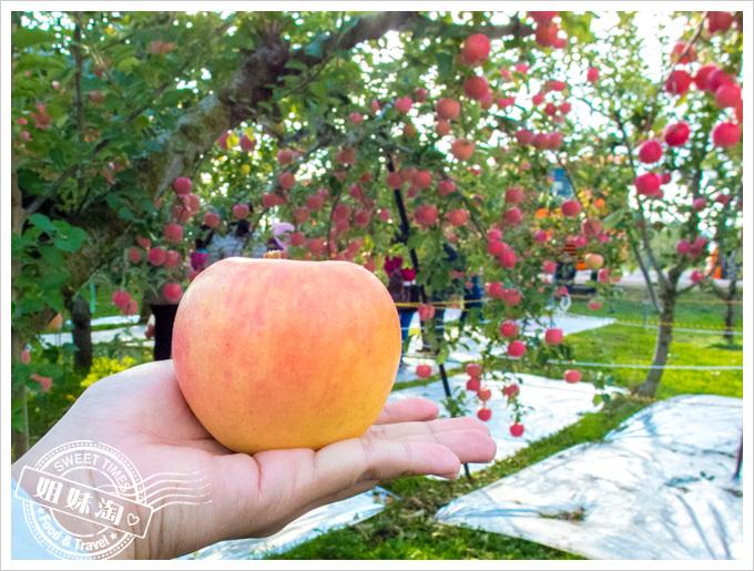 東北果園採果樂水蜜桃蘋果