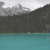 Calm lake Atom theme