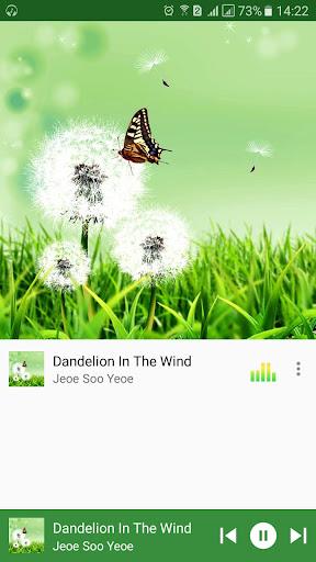 Pro VLC Music Player by Optimus NTL (Google Play, United