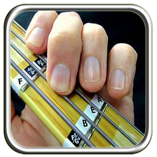 Bass Guitar For Beginners (app)