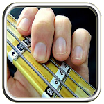 Bass Guitar For Beginners Icon